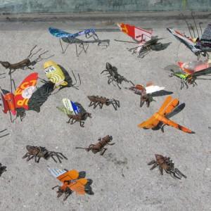 Insectos reciclaje
