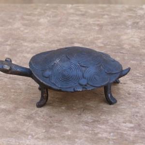 Tortuga bronce pequeña