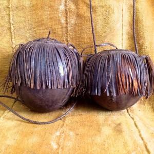 Calabazas para comida de Niger
